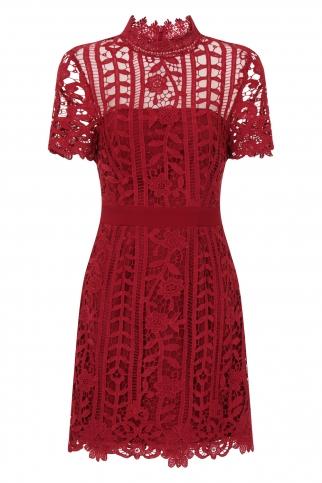 Burgundy Crochet Mini Dress