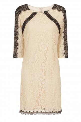 Beige Eyelash Lace Mini Dress